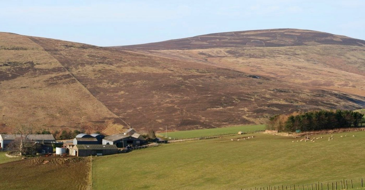 A ferm wi Lammermuir Hills in the backgrund